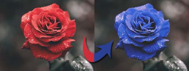 cambiare colore ad un oggetto con Photoshop
