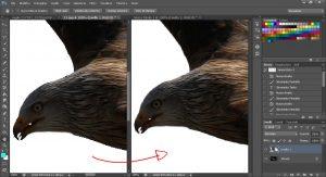 eliminare i bordi frastagliati con Photoshop