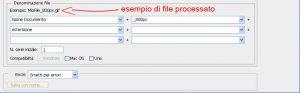 opzioni di denominazione dei files dalla finestra di dialogo del batch